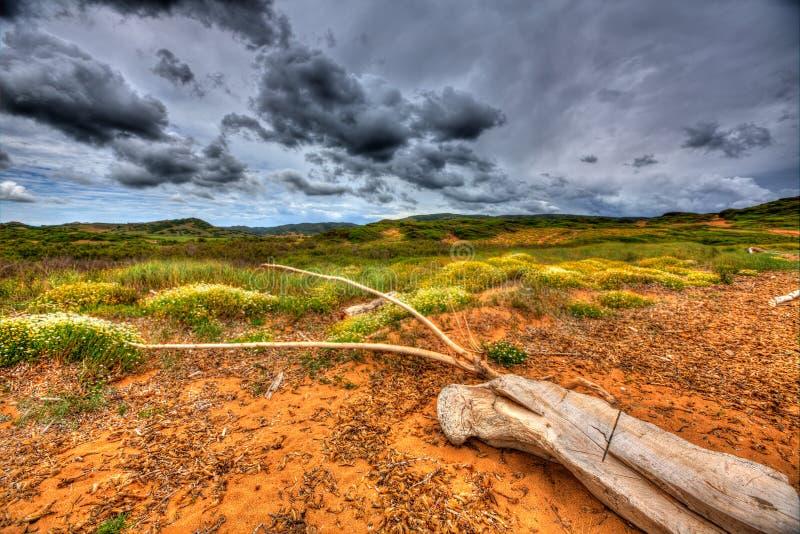 Menorca dramatic landscape in cala pregonda stock photos