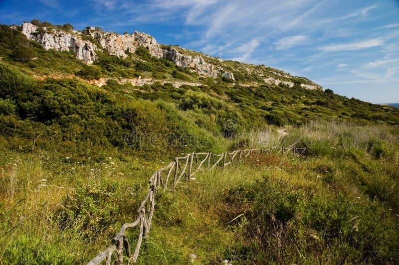 Download Menorcan hillside stock image. Image of island, balearics - 14251629