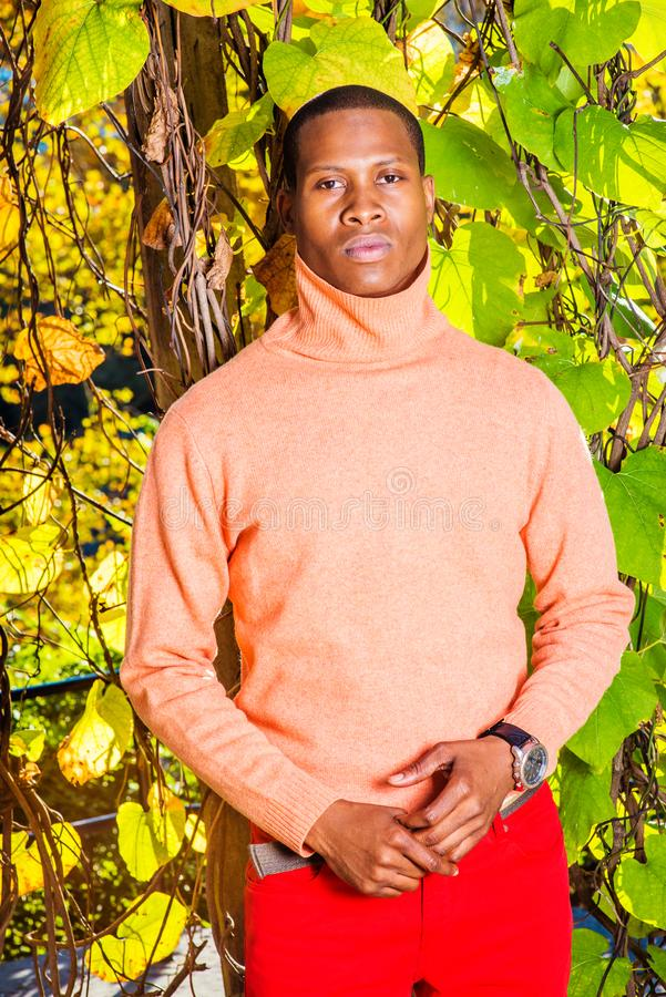 Mens Autumn Casual Fashion in New York royalty-vrije stock afbeelding