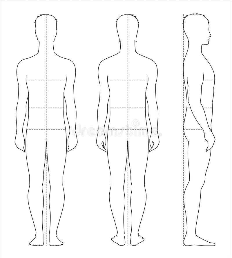 Mens body measurements vector illustration
