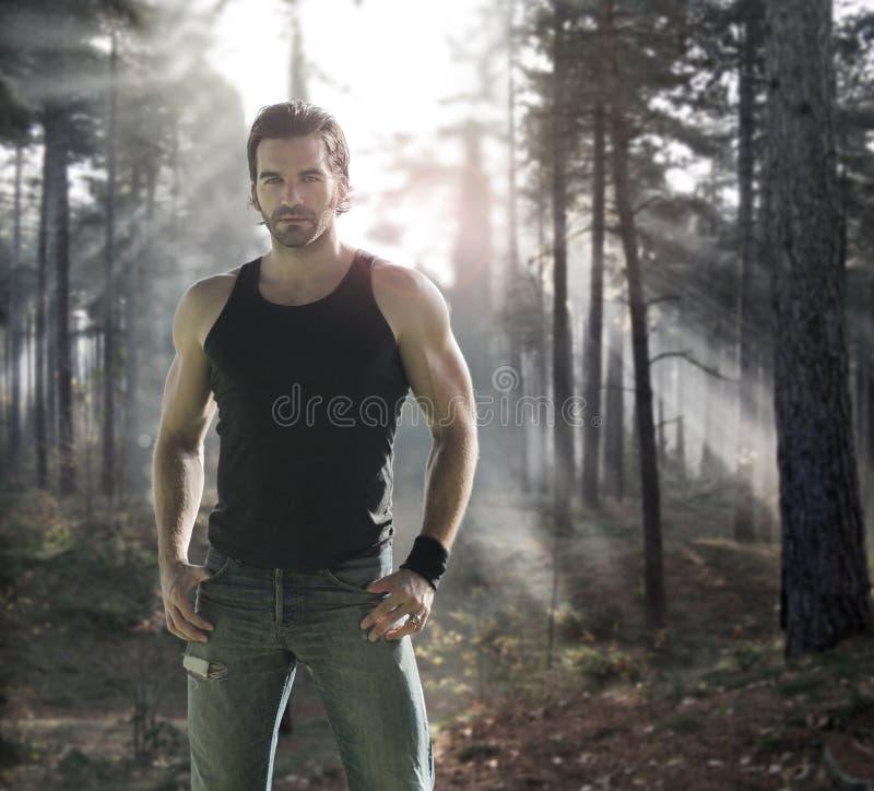 Mens in bos stock afbeeldingen