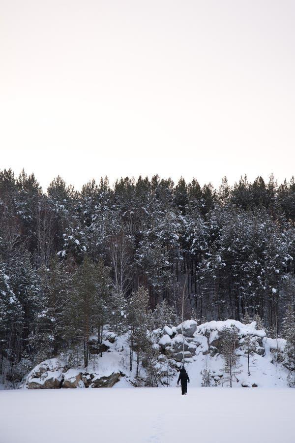 mens in bos tijdens sneeuwonweer stock fotografie