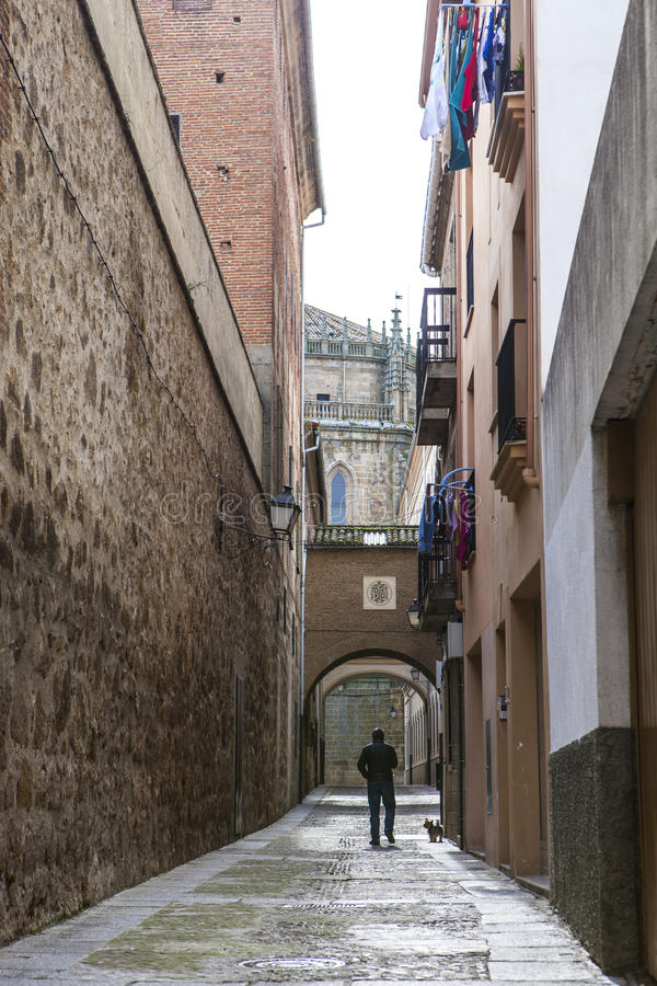 Mens die de hond langs Encarnacion Street, Plasencia, Spanje lopen stock fotografie