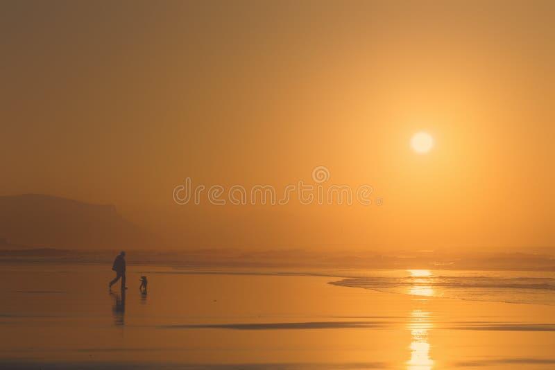 Mens die de hond spelen bij het strand royalty-vrije stock afbeelding