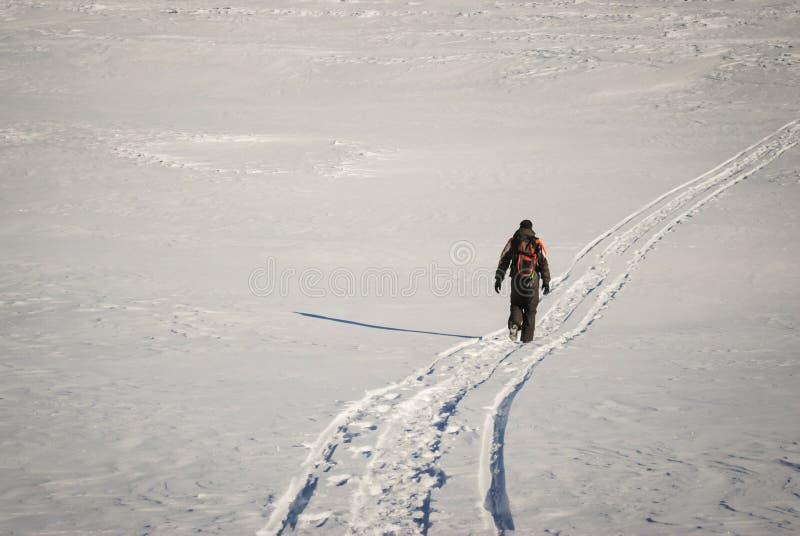 Download Mens Die In De Winter Op Een Sneeuwsleep Wandelen Stock Afbeelding - Afbeelding bestaande uit extreem, achtergrond: 39111865