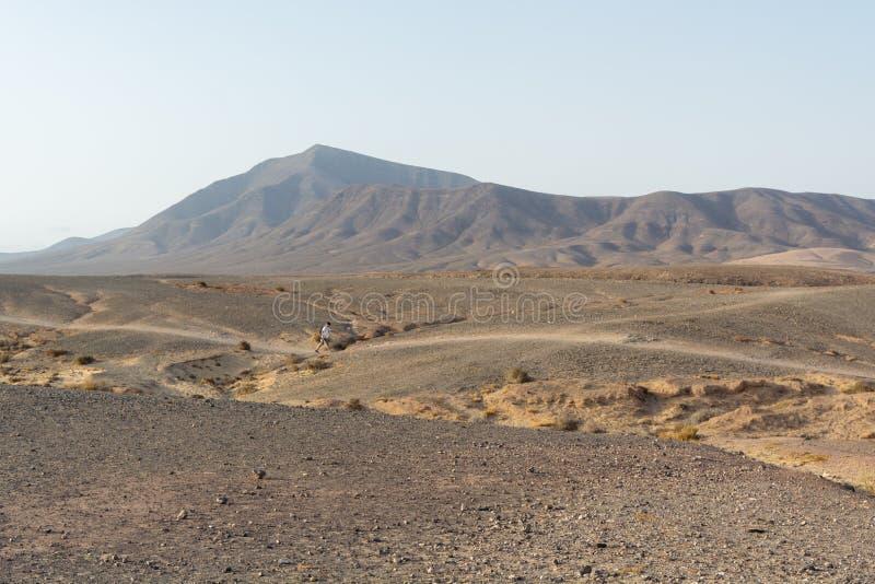 Mens die door een verbazend vulkanisch landschap in het nationale park van Timanfaya, Lanzarote lopen, Canarische Eilanden stock foto's