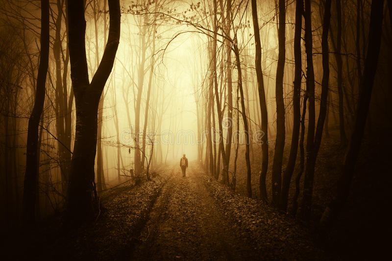Mens die in een angstaanjagend donker en abstract bos met mist in de herfst lopen stock afbeelding