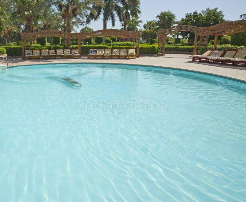 Mens die in een tropische hotelpool zwemt royalty-vrije stock foto