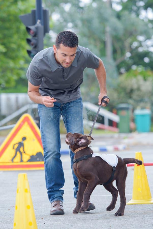 Mens die energieke hond opleiden royalty-vrije stock afbeeldingen