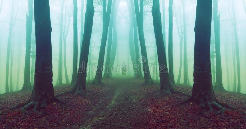 Mens die in eng bos met mist lopen royalty-vrije stock fotografie