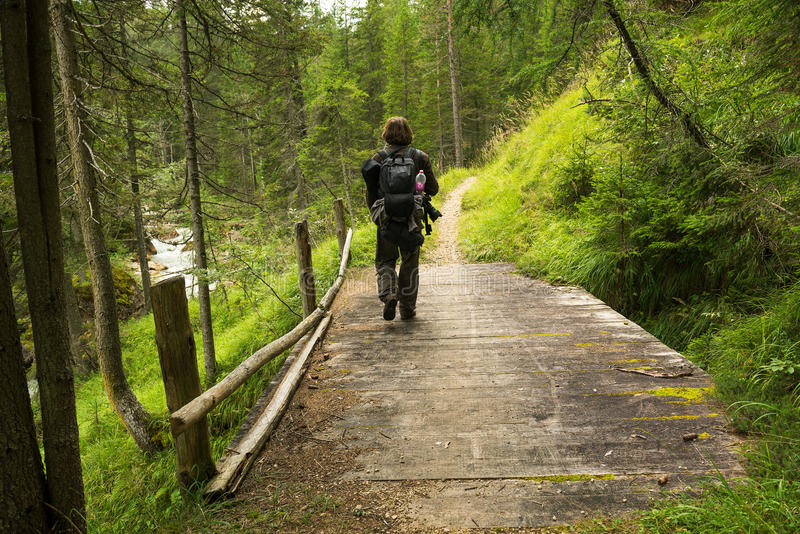 Mens die in het bos op de brug wandelen stock foto's