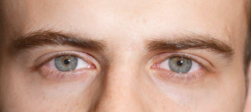 Mens die met blauwe ogen de camera, macro bekijken royalty-vrije stock fotografie