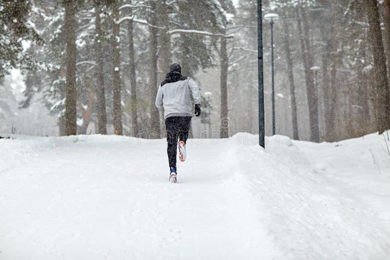 Mens die op sneeuw behandelde de winterweg lopen in bos royalty-vrije stock afbeelding
