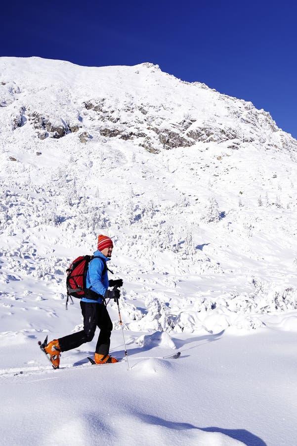 Mens die op verse poedersneeuw ski?en royalty-vrije stock foto's
