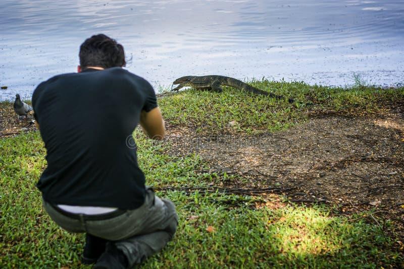 Mens die schot van hagedis nemen royalty-vrije stock fotografie