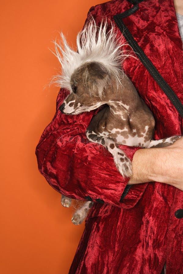 Mens die unieke hond houdt. royalty-vrije stock afbeeldingen