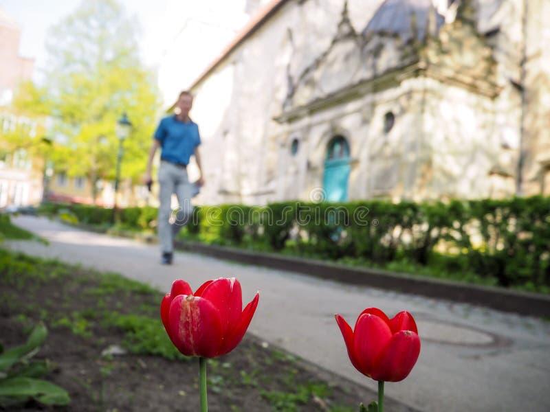 Mens die van een wandeling naast de Kreuzkirche-kerk in Hanover genieten royalty-vrije stock afbeeldingen