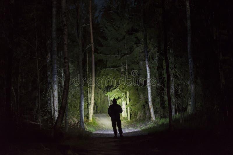 Mens die zich in donker bos bij nacht met flitslicht en hoodie op hoofd bevinden royalty-vrije stock foto's