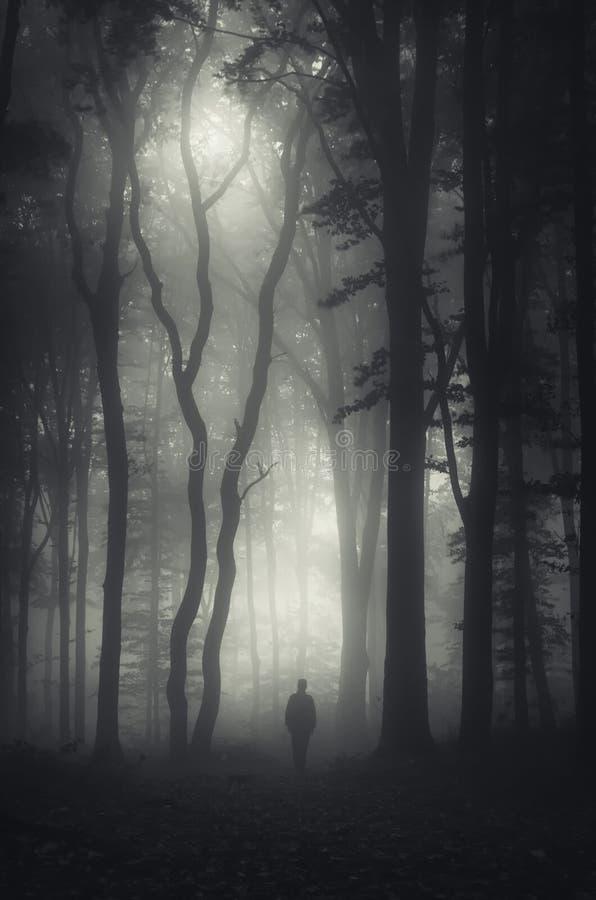 Mens in donker geheimzinnig bos met mist op Hallooween stock afbeelding