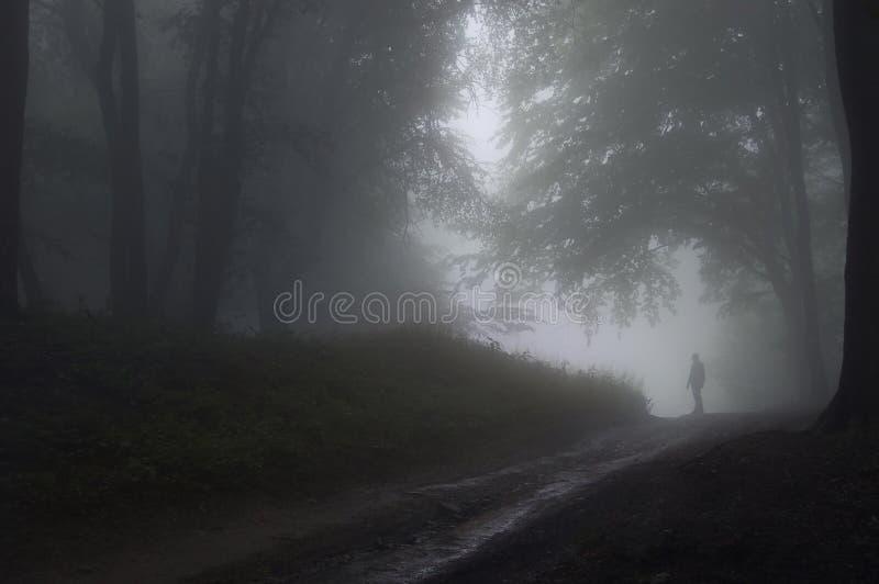 Mens in een bos met mist royalty-vrije stock afbeelding