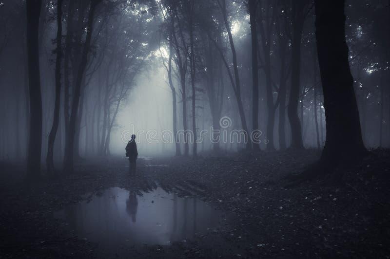 Mens in een bos met vijver en mist na regen stock foto's