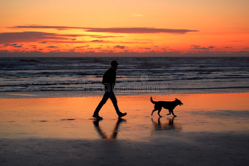 Mens en hond die bij zonsondergang lopen   royalty-vrije stock fotografie