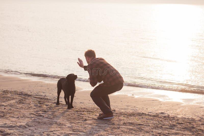Mens en hond op het strand stock fotografie