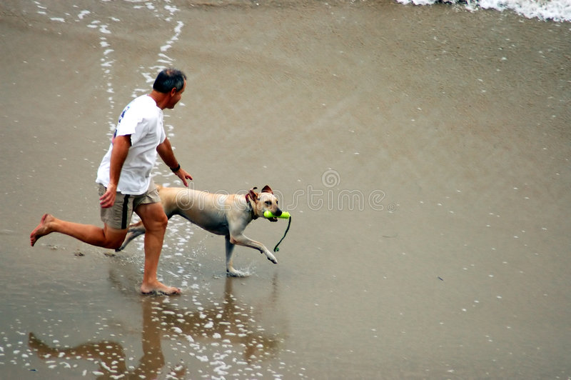 Download Mens en Hond op Strand stock afbeelding. Afbeelding bestaande uit splashing - 33001
