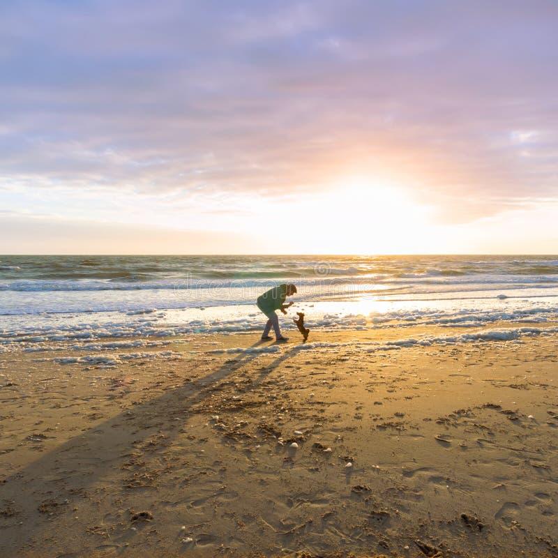 Mens en zijn hond het spelen bij het strand stock afbeeldingen