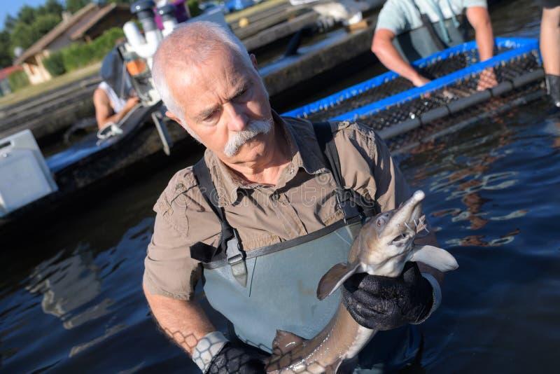 Mens in fishermans die vissenkabeljauw houden royalty-vrije stock foto's