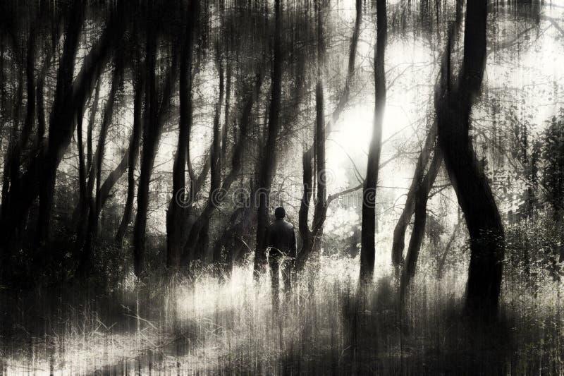 Mens in het bos stock afbeelding