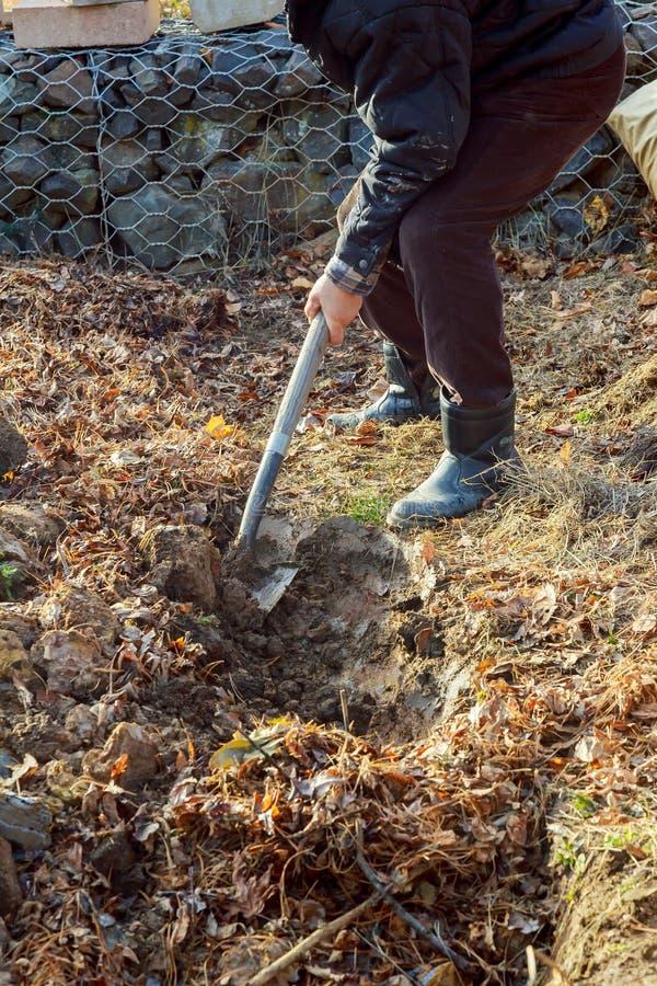Mens het graven met spade in de herfst of de lentetuin, stock afbeeldingen