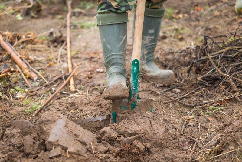 Mens het graven met spade in tuin stock afbeelding
