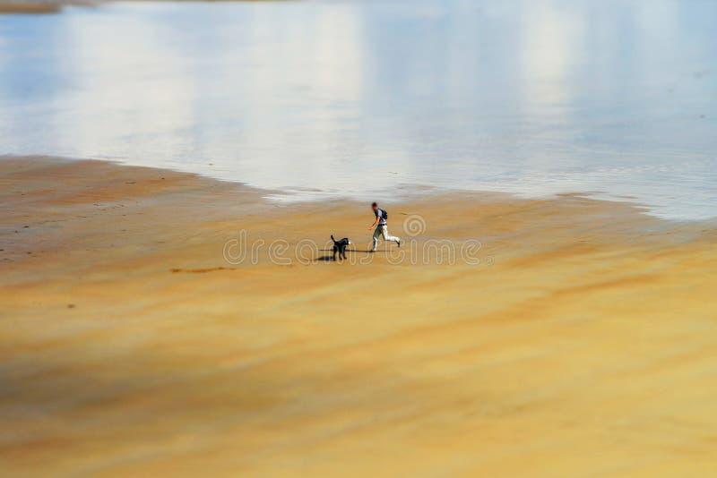 Mens het spelen met zijn hond op het strandzand, Bretagne royalty-vrije stock fotografie