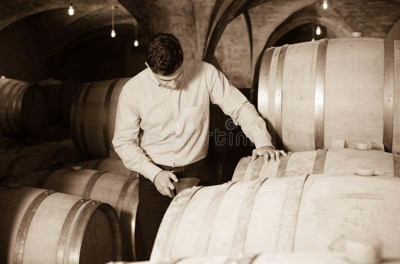 Mens het stellen in wijnmakerijkelder royalty-vrije stock foto