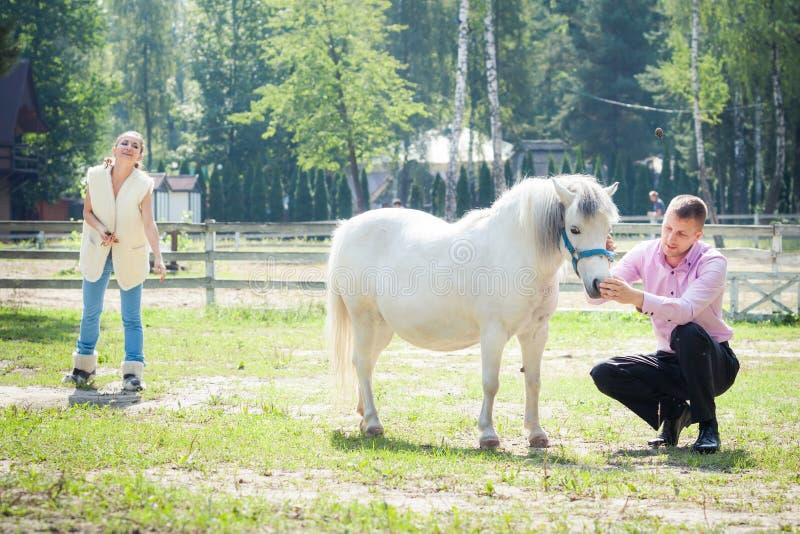 Mens, meisje en paard stock foto's