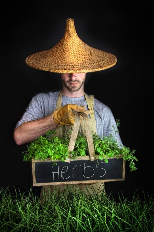 Mens met het Aziatische hoed tuinieren royalty-vrije stock afbeeldingen