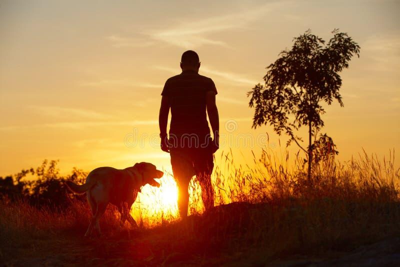 Mens met hond stock foto