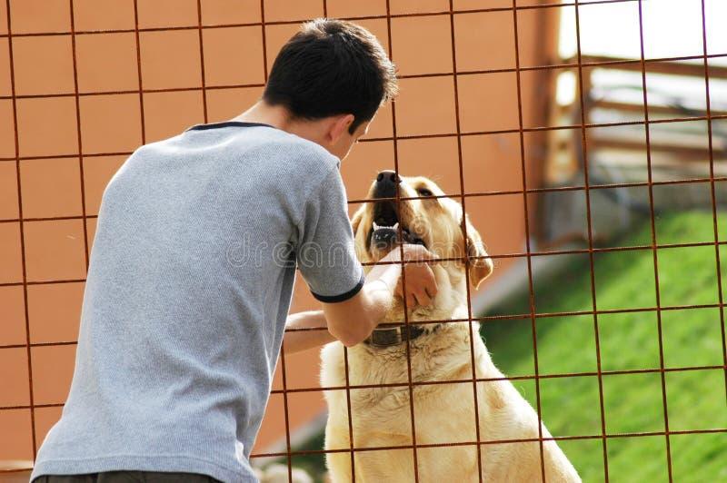 Mens met hond royalty-vrije stock foto's