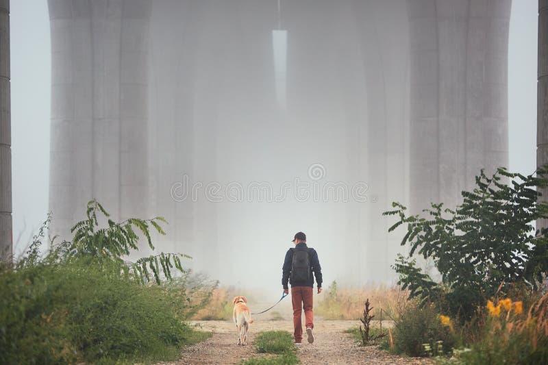 Mens met hond in geheimzinnige mist stock afbeeldingen