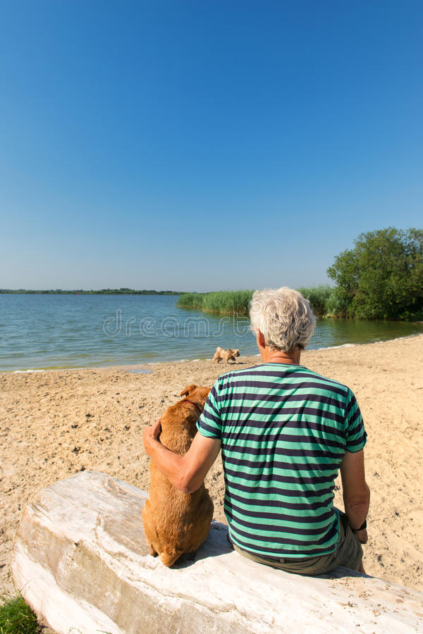 Mens met hond in landschap met rivier stock foto's