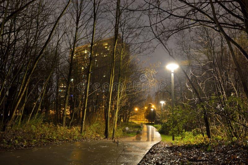 Mens met hond voor een gebouw in een Griezelig park bij een regenachtige nacht stock foto's