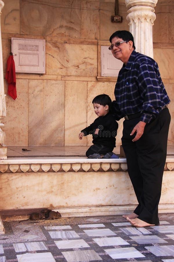 Mens met kleine jongen het letten op ratten in Karni Mata Temple, Deshnok royalty-vrije stock foto's