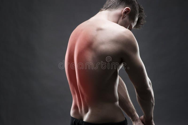 Mens met rugpijn Pijn in het menselijke lichaam Spier mannelijk lichaam Het knappe bodybuilder stellen op grijze achtergrond stock foto