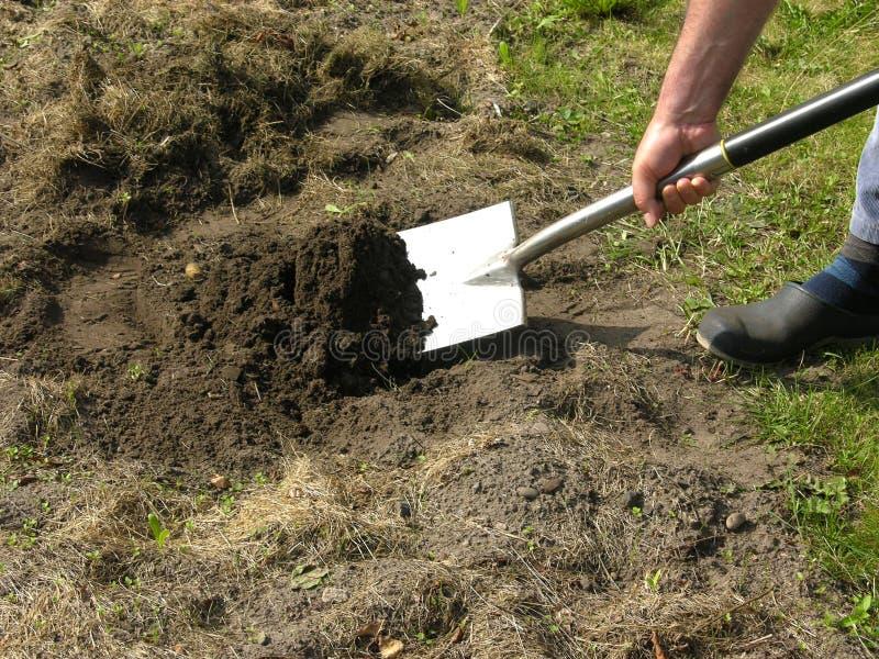 Mens met spade die het werk in de tuin doet stock fotografie