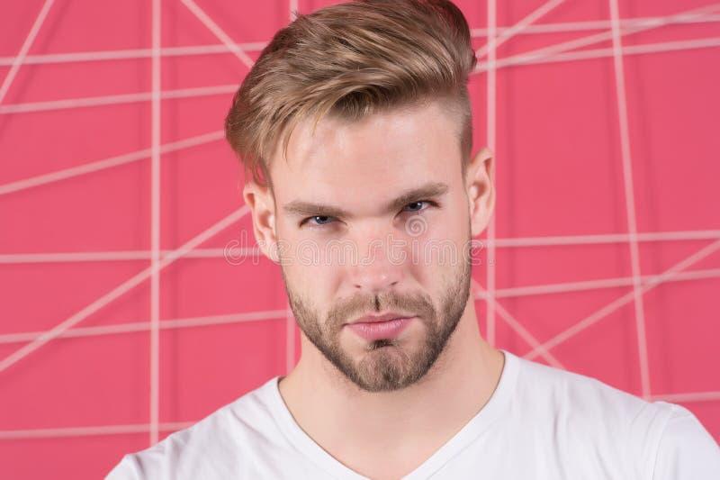 Mens met varkenshaar op strikt geconcentreerd gezicht, roze achtergrond Mannelijkheidconcept De mens met baard of ongeschoren ker stock foto's
