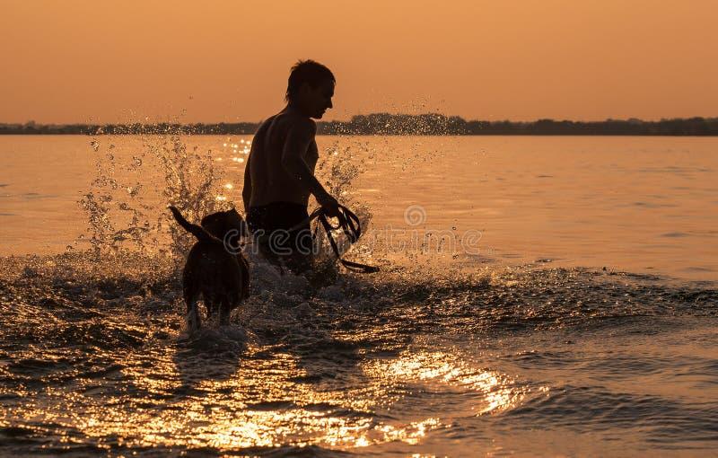 Mens met weinig brakpuppy die rond in oceaanzonsonderganggolf voor de gek houden royalty-vrije stock foto