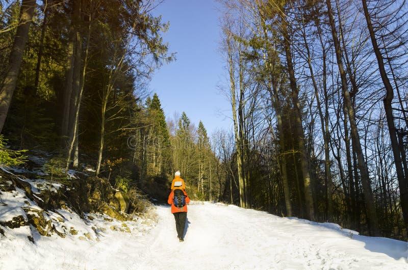 Mens met zoon die op schouders langs de weg in de sneeuw boswinter lopen dag royalty-vrije stock afbeeldingen