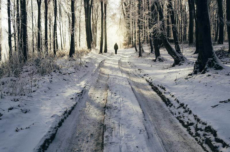 Mens op bevroren de winterweg in het bos royalty-vrije stock foto