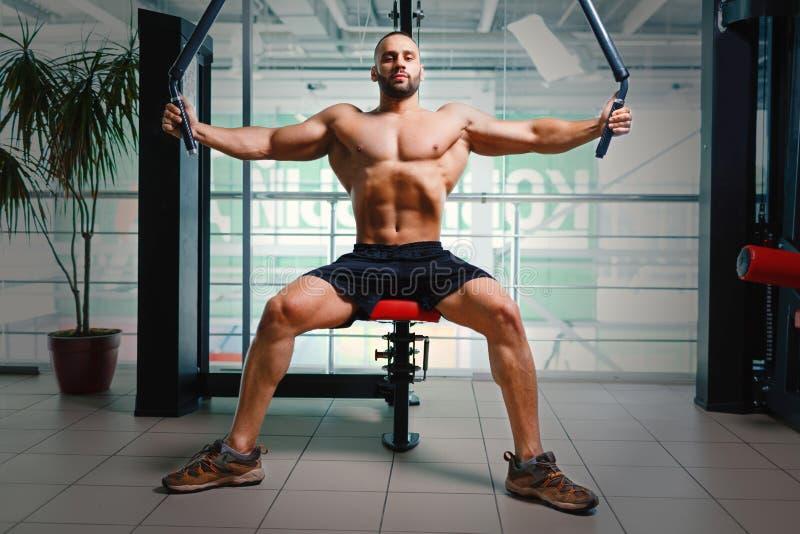 Mens op de machine van de wapenpers Bodybuilder die met spiertorso op een gymnastiekachtergrond uitwerken Het concept van de spor stock foto's
